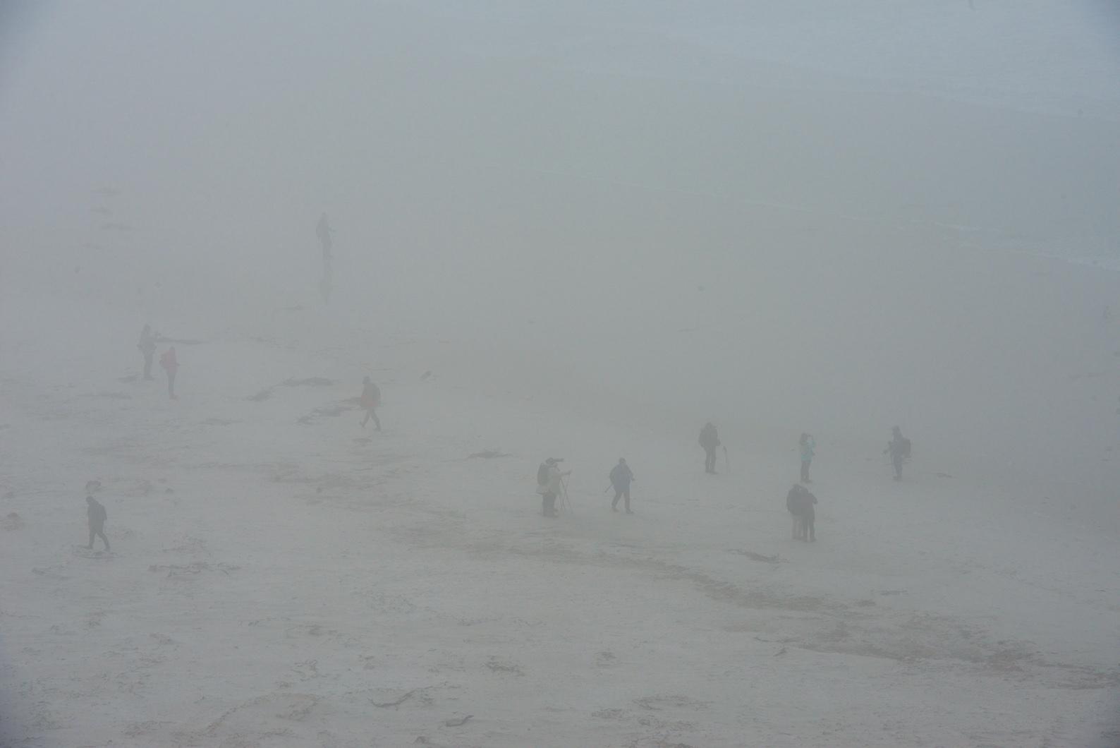 FalklandsSL_Web_12