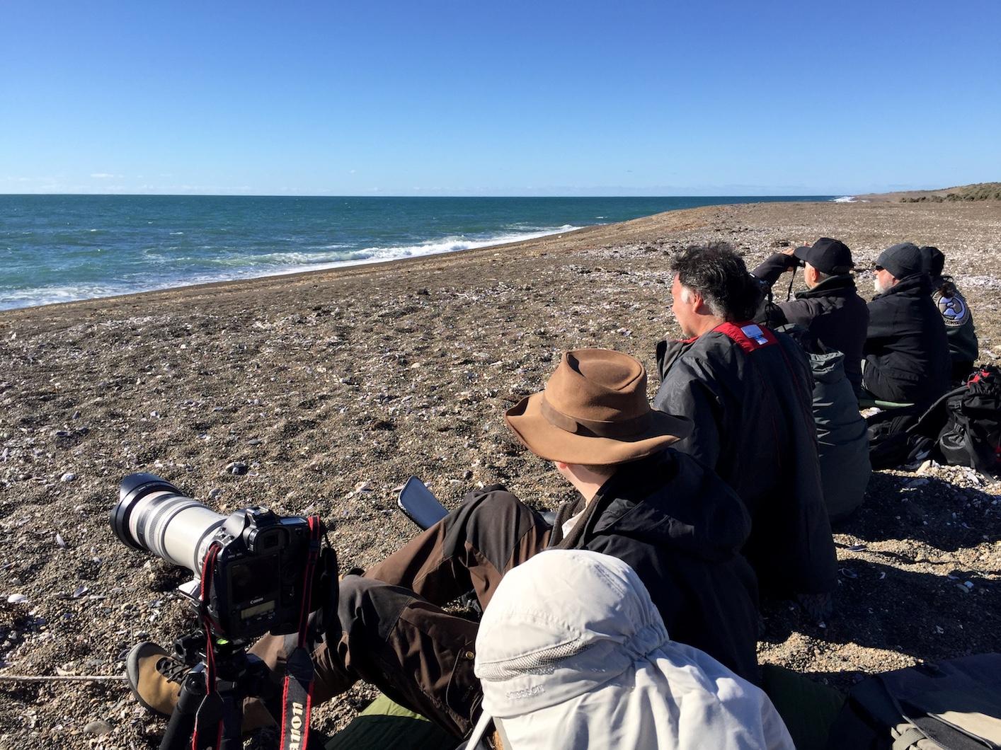 Die Fotografen warten auf die Orkas.
