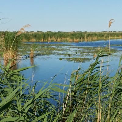 Ultima Frontiera Donaudelta