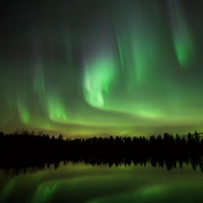 Nordlicht und Vögel in Finnland